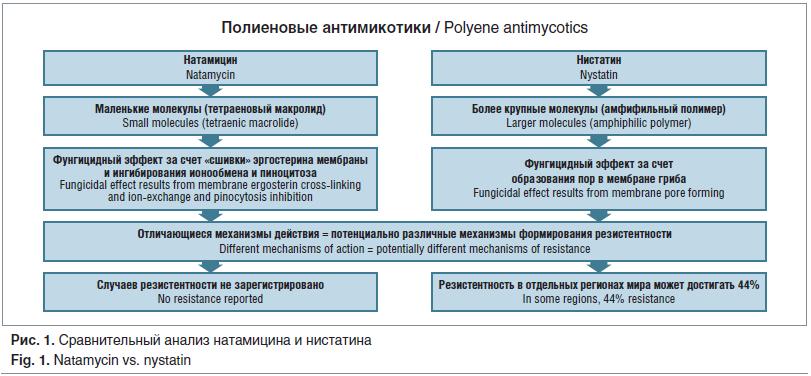 Рис. 1. Сравнительный анализ натамицина и нистатина Fig. 1. Natamycin vs. nystatin