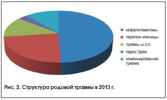 Рис. 2. Структура родовой травмы в 2013 г.