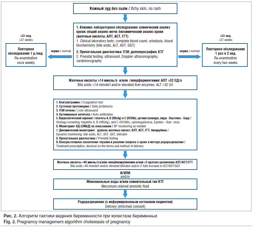 Рис. 2. Алгоритм тактики ведения беременности при холестазе беременных Fig. 2. Pregnancy management algorithm cholestasis of pregnancy