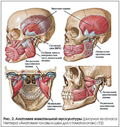 инъекции в височную мышцу